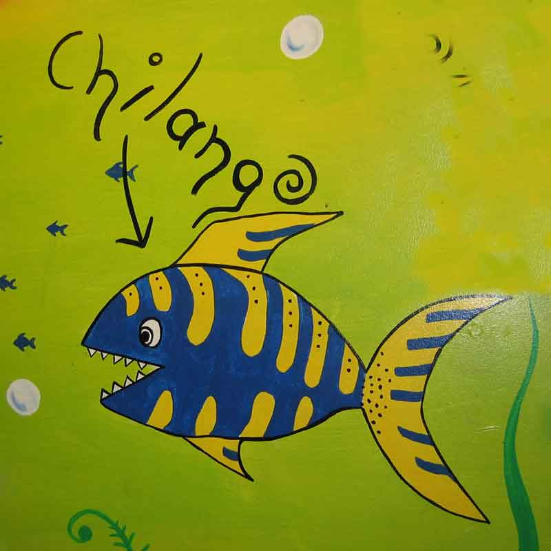 Fish3_